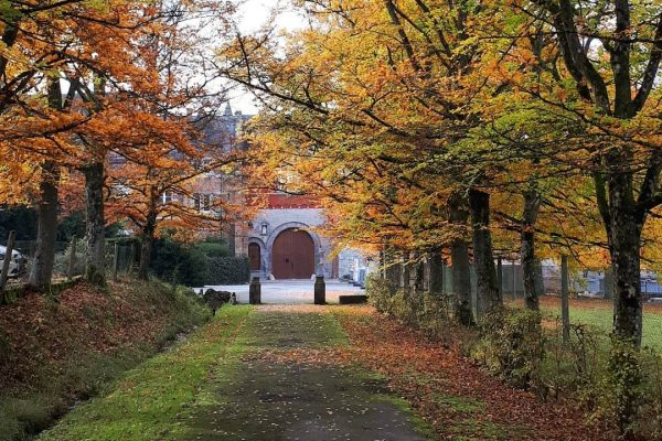 Abadía Saint-Remy de Rochefort - (© Quentin Guiraud)