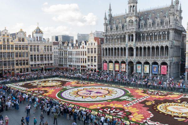 Alfombre de Flores – Grand-Place de Bruselas 2018