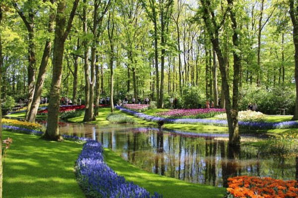 Los Jardines de Keukenhof - Excursión a Keukenhof
