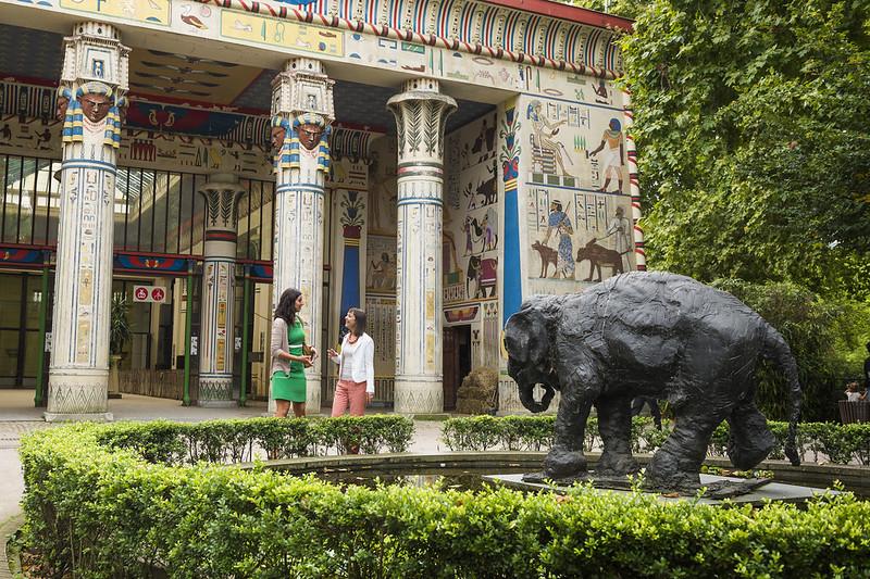 ¿Que ver y hacer en Amberes en  día?-Excursión a Amberes desde Bruselas - En imágenes - Zooo-de-Amberes.