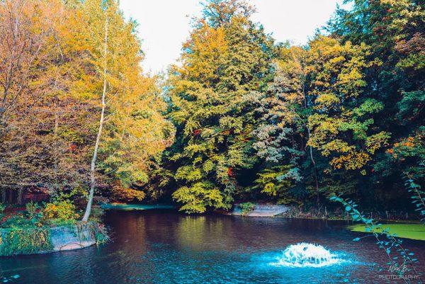 Le Parc d'Osseghem à Laeken - Bravo Discovery