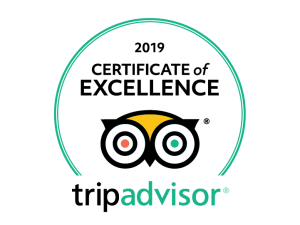 2019-Certificate-of-excellence-TripAdvisor-Bravo-Discovery