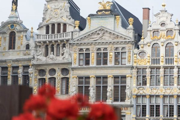 Breathtaking view of the houses on the Grand-Place of Brussels.